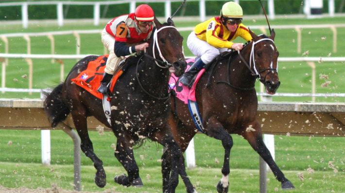 How to Enjoy Japan's Horse Racing