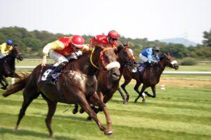 Winning a Thailand Horse Race