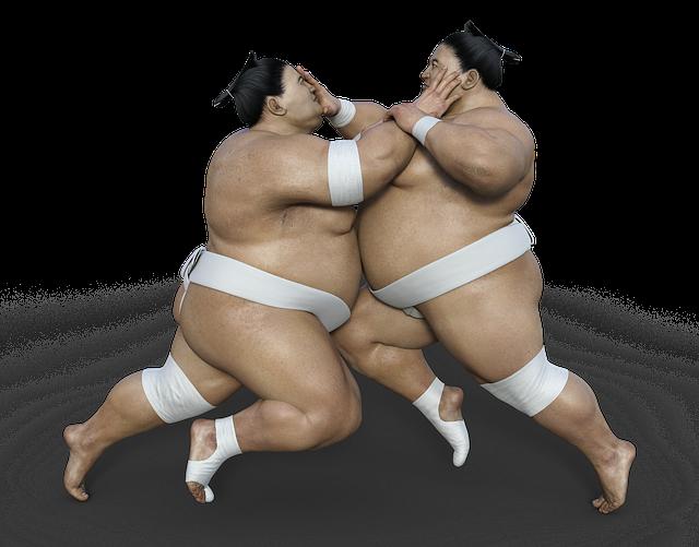 A Sumo Wrestler's Diet