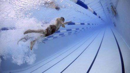 Top Male Swimmers in the World To Inspire You